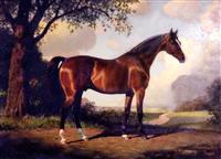 Darley Arabian 2