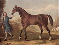Darley Arabian 3