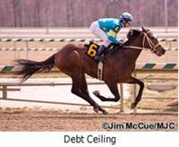 /horse/Debt Ceiling