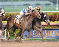 Vinceremos winning a Maiden Special Weight race at Gulfstream Park.