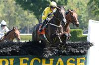 Demonstrative wins at Saratoga (8-25-14)