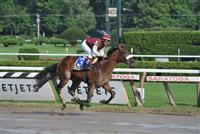 Desert Party captures the Sanford at Saratoga