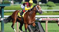 Discreetly Mine wins the 2010 King's Bishop at Saratoga