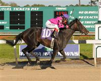 Diva Delite takes the 2010 Suncoast