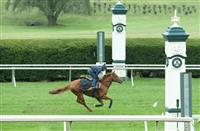 Dutch Connection exercises on Keeneland turf (10-2-15).