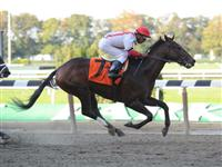 Economic Summit breaks maiden at Belmont Park (10-07-10).