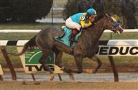 Gotham Stakes/Pick 6 Carryover Preview