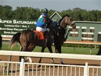 September 15, 2009: Electric Alphabet in post parade for Super Derby Prelude at Louisiana Downs.