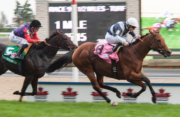 Erupt rallies down the stretch to win Pattison Canadian Internaitonal