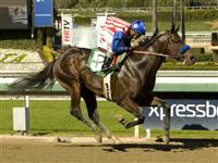 Fed Biz wins at Santa Anita Park on 2-9-12. 