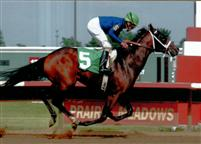 Fast Freight driving to victory in his first out - a Maiden Special Weight at Prairie Meadows