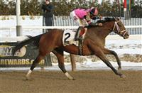 Bumpy Road to the Kentucky Derby