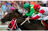 Finnegans Wake outduels Admiral Kitten to win 2014 Arlington Handicap