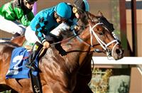 Finnegans Wake in time in Hollywood Turf Cup