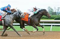Breeders' Cup Filly & Mare Sprint Storylines