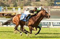 Flamboyant wins 2014 La Puente