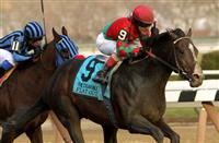 Best Thanksgiving Racing: Aqueduct, Churchill Downs, or Del Mar?
