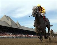 Forest Music winning Honorable Miss Handicap 2005