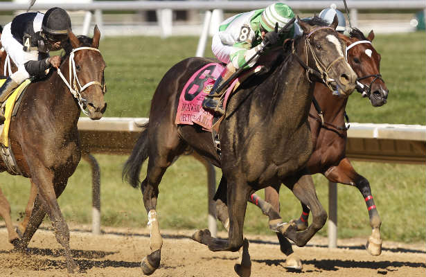 Fortune Pearl, winner of the 2014 Delaware Oaks