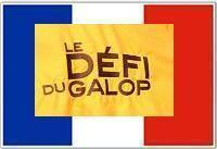 /stakes/Grand Prix Du Conseil General Des Alpes Maritimes