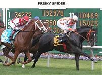 FriskySpider