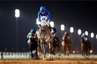 Frosted Fabulous in Dubai Debut