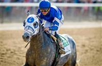 Breeders' Cup Classic 2016: Frosted, others Classic bound