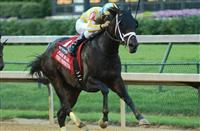 Funny Proposition Floors Royal Delta in Fleur de Lis