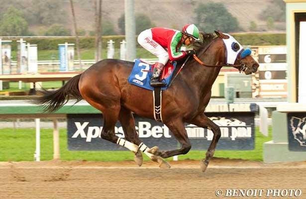 Fury Kapcori wins at Santa Anita (2-7-14).