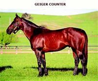 Geigercounter