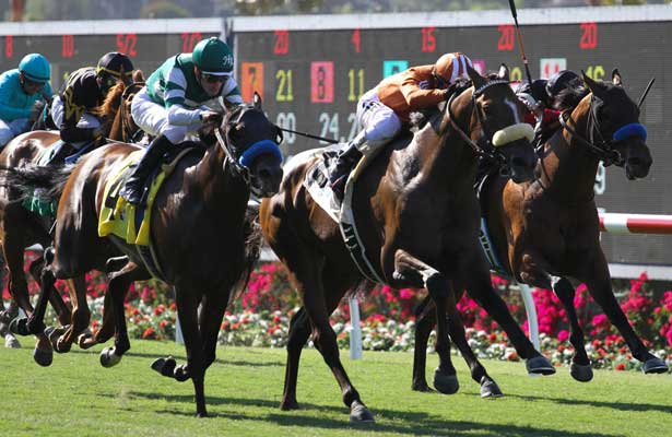Gervinho wins the 1st Division of the Oceanside Stakes at Del Mar Race Course in Del Mar, California on July 17,2013. (Zoe Metz/ Eclipse Sportswire)