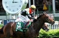 May 3, 2014: Global View with Gary Stevens wins the Grade 2 American Turf Stakes, for 3-year olds, going 1 1/6 mile, at Churchill Downs. Trainer: Thomas Proctor. Owner: Glen Hill Farm. Sue Kawczynski/ESW/CSM