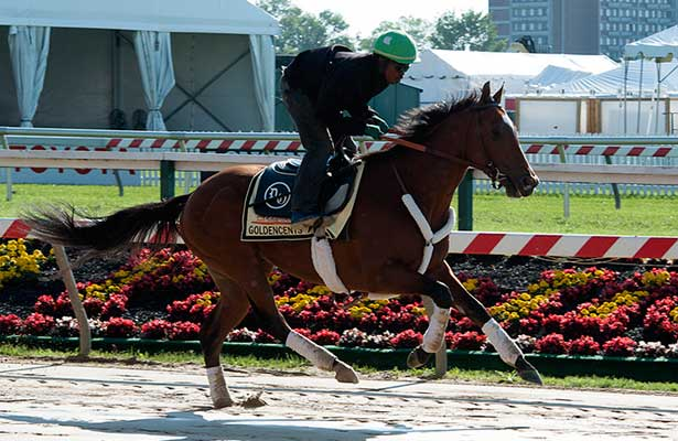 Goldencents gallops at Pimlico (5-12-13)