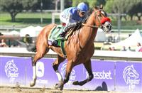 2014 Breeders' Cup Dirt Mile: Can Goldencents Keep His Crown?