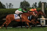 Grand Arch holds off The Pizza Man in the Shadwell Turf Mile