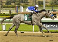 Holy Candy breaks maiden at Santa Anita.