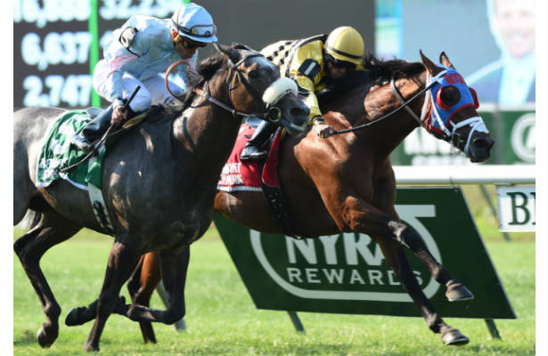 Hangover Kid holds off Grandeur to win the 2014 Bowling Green Stakes