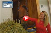 Meeting American Pharoah at Churchill Downs (VIDEO)