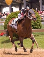 Happy My Way wins 2014 MD Sprint.