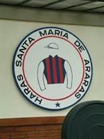 /org/Haras Santa Maria de Araras