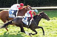 Breeders' Cup bound Harmonize goes Wide to Win the Jessamine