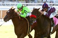 Home Run Kitten nips Ambitious Brew in 2014 Eddie D.