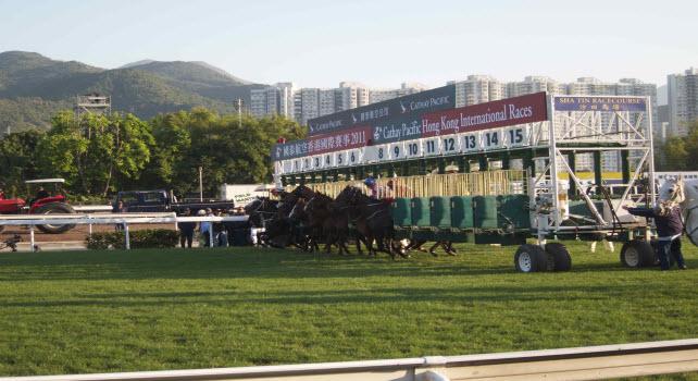 Hong Kong Cup 2011