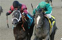 New York's 2014 Kentucky Derby Contenders IV