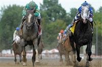 Tough Call for the Older Dirt Male Eclipse Award