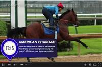 HorseCenter - Belmont Stakes 2015 Preview/American Pharoah vs. 7
