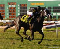 Blues Street winning the 23rd Running of Fair Grounds Handicap(Grade III) with Javier Castellano