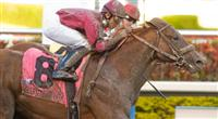 Ice Box captures the 2010 Florida Derby