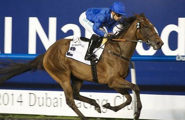 Ihtimal UAE Oaks 615 X 400