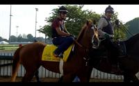I'll Have Another training prior to the 2012 Kentucky Derby